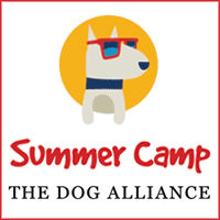 This image is a link and logo for the The Dog Alliance Summer Camp.