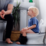A small boy sitting in his training toilet learning how to use the toilet on his own.